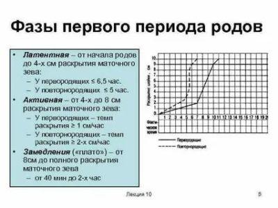 Сколько длится латентная фаза родов