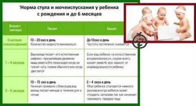 Сколько раз в день какает ребенок в первые дни жизни