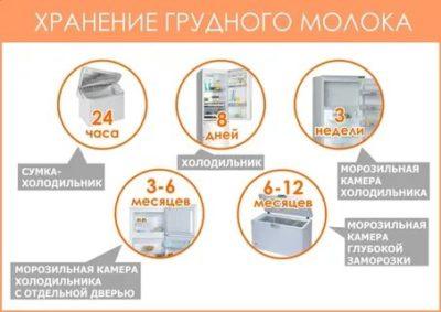 Сколько можно хранить в холодильнике Размороженное грудное молоко