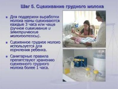 Сколько раз в день нужно сцеживать грудное молоко