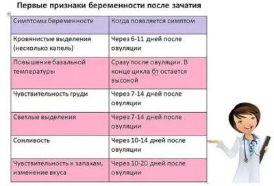 Когда можно определить беременность после зачатия