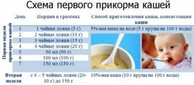 Как вводить первый прикорм каши