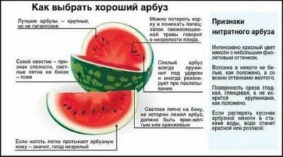 Можно ли есть арбуз во время кормления грудью