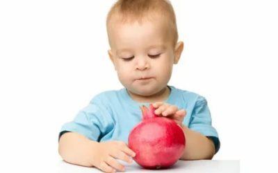 Можно ли гранат ребенку 1 год