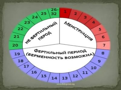 Что значит фертильный день цикла