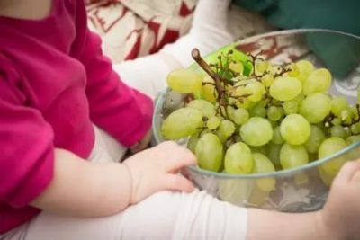 Можно ли детям виноград