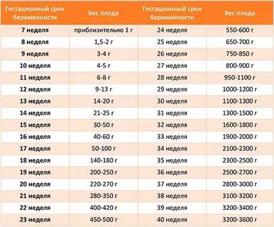 Сколько должен весить ребенок на 32 неделе