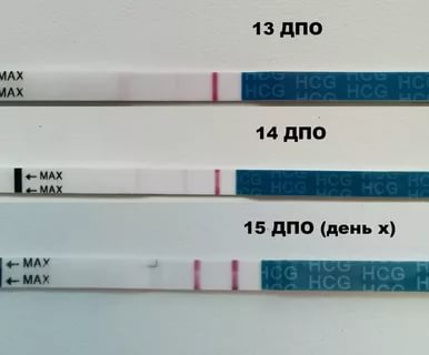 Когда нужно делать тест на беременность до задержки
