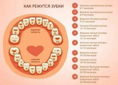 Сколько зубов должно быть у ребенка в 6 лет