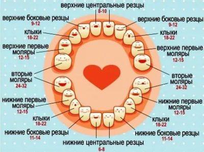 Сколько по времени длятся симптомы прорезывания зубов