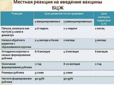 Сколько по времени действует прививка Бцж