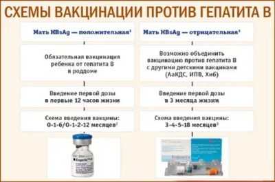 Для чего нужна прививка от гепатита Б