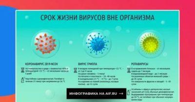 Сколько ротавирус может жить во внешней среде