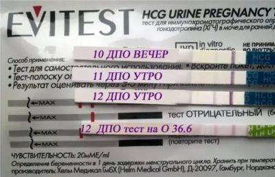 Когда можно делать тест на беременность с чувствительностью 20