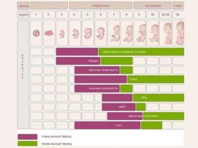 Как рассчитать не акушерский срок беременности