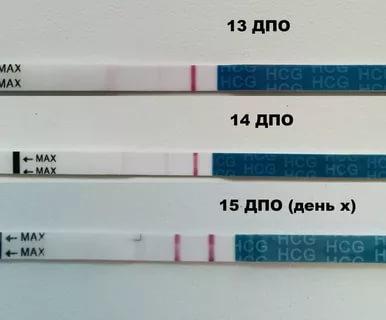 Какой тест может показать беременность до задержки