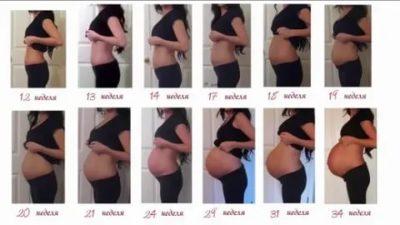 Когда начинает расти живот при беременности двойней