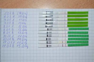 Как показывает тест на овуляцию