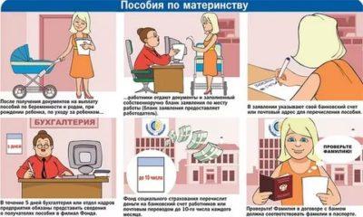 Кто выплачивает пособие по беременности и родам работодатель или государство