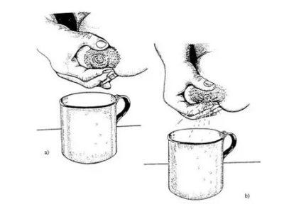 Как правильно сцеживать молозиво руками