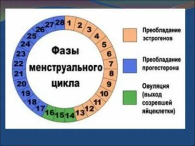 Как понять сколько дней будут идти месячные
