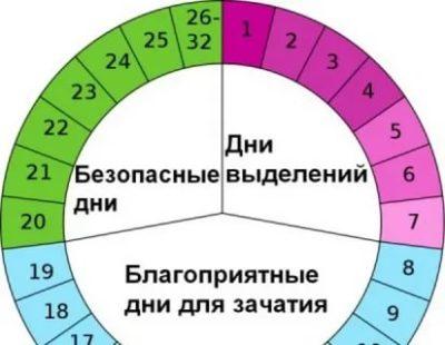 Можно ли забеременеть на 14 день цикла